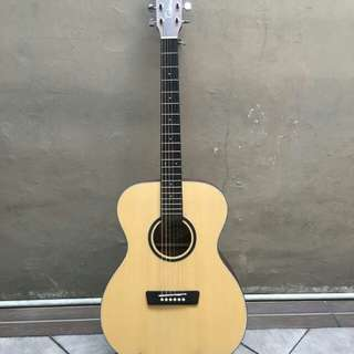 Wildblood akustik gitar Black-O