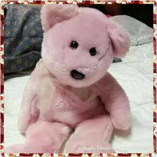 ty Pink bear with lace scarf