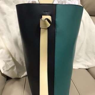 Celine Twisted Cabas in green & navy, calfskin with felt lining