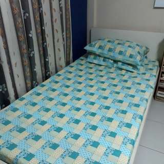 Bedsheet with pillowcases (single)