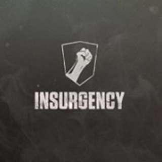 Insurgency steam