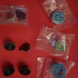 Young Scientist Badges & NAFA Badges