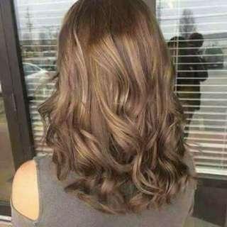 Hair Shampoo Color