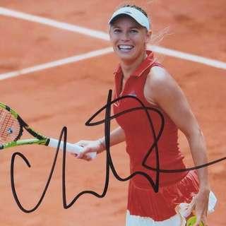 Tennis Autograph (WTA) - Caroline Wozniacki