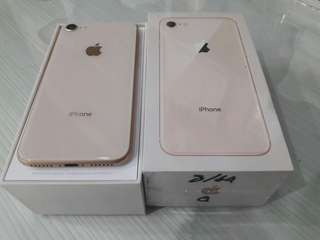 iPhone 8 64 gb mulus