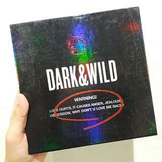 BTS DARK & WILD