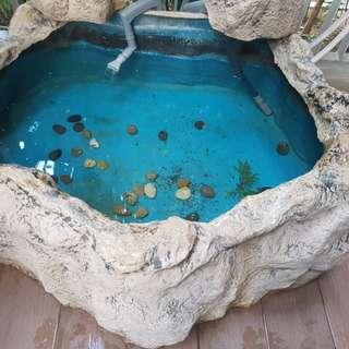 Fibre glass fish pond