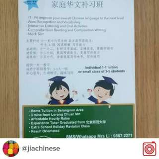 Chinese Home Tuition P1-P6 小学中文补习 普华/高华