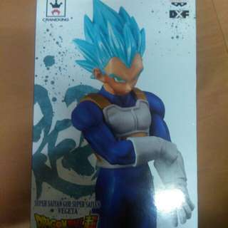 DXF THE SUPER WARRIORS V5 (AUTHENTIC)