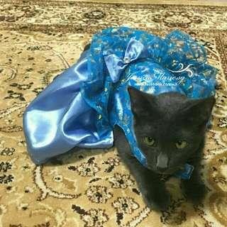 Cat Baju Kurung
