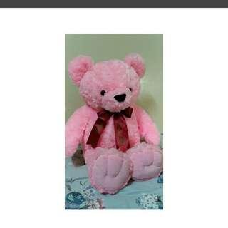粉紅色大泰迪熊