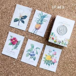 5pcs Vintage Flower Sticker Sample Set D