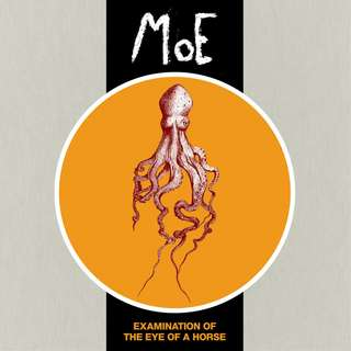 MoE - Examination of the Eye of a Horse / Vinyl LP