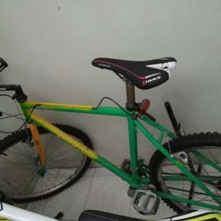 Bridgestone bike for sale