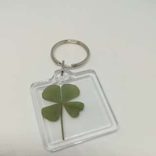 Real clover keychain