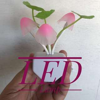 LED Night Lamp (small)