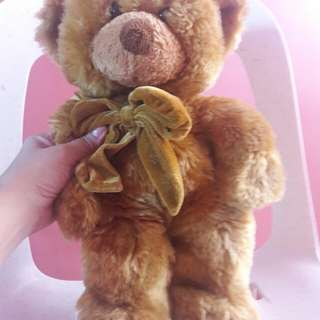 teddy the bear