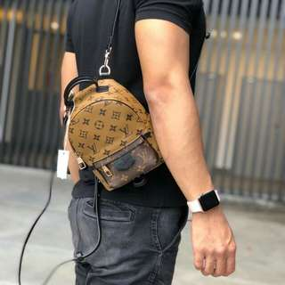 lv mini palm spring
