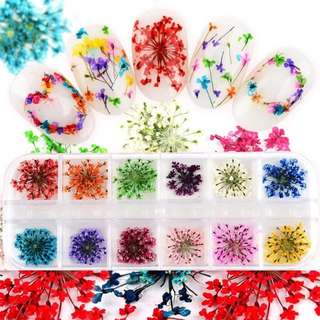 12 Colors DIY Nail Art Mixed Dried Flowers With Bottle 3D Dry Flower Decoration Nails Stickers Manicure Tips @ME88