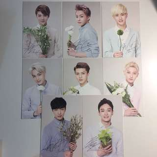 EXO nature republic postcard