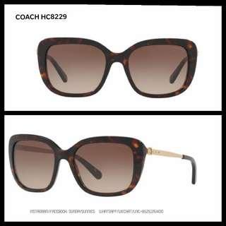 Coach HC8229 rectangular acetate sunglasses