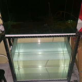 2 tier 2ft fish tank (2 tanks plus stand)