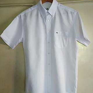 Lacoste button down polo, size 4
