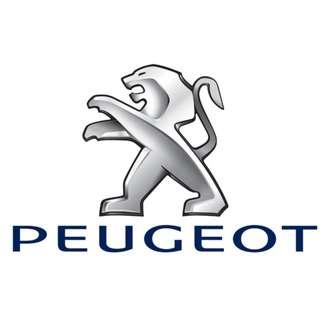 Peugeot Timing Belt Assembly & Repair Service