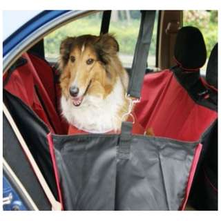 Pet Car Back Seat Cover - single or double
