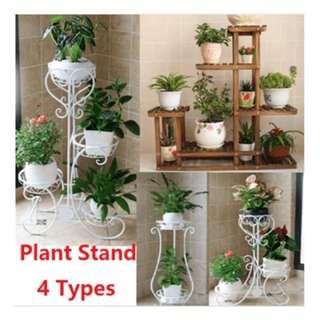 Carbonized cedarwood Plant stand plant