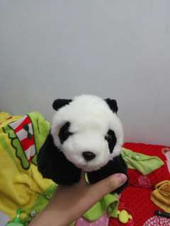 Doll panda boneka