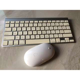 Apple wireless Magic Keyboard and wireless Mighty Mouse