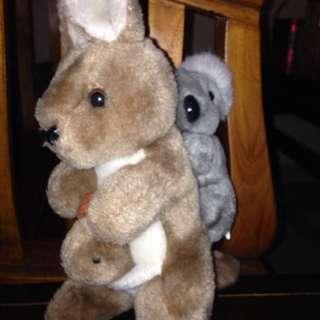 Koala bear soft toys