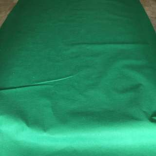 Green Carpet for Sale or Rental | Suitable for Weddings, events or roadshow!