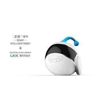 ZIB Educational Robot