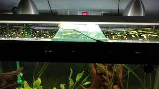 4ft Aquarium Light