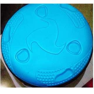 Summer Blue Frisbee