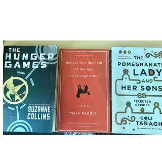 Book Bundle Hunger Games