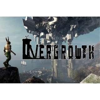Overgrowth ( Price Neg..)