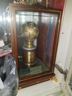 中國2002世界盃