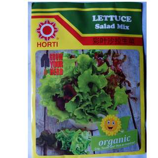Lettuce and Kailan Seeds