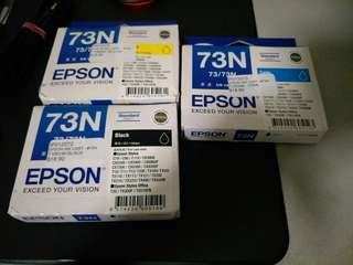 Epson 73N Ink Cartridge