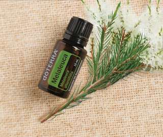 doTERRA Melaleuca (Tea Tree) Essential Oil
