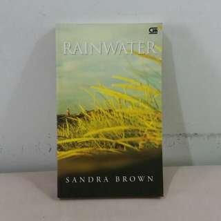 Novel Rainwater (Sandra Brown)