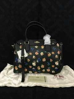 Coach bag (free shipping)