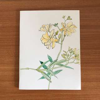 Handmade Watercolour card of flower (Nerium white oleander flower) Free delivery