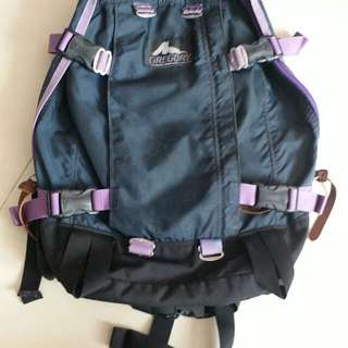 Gregory All Day 22L Backpack 背囊