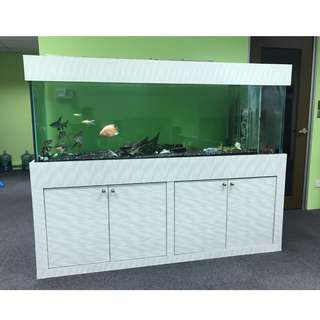 6.5 feet Large Fish Tank For Sale!!!