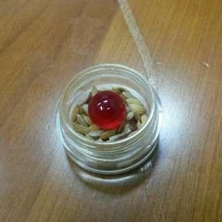 Big Red Centipede Pearl