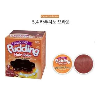 Korean Shaking Pudding Hair Colour - 5.4 Cappuccino Brown